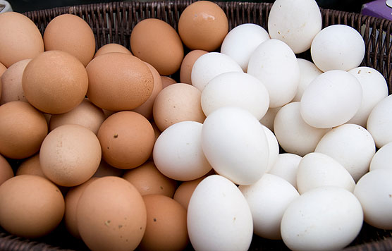 brown-and-white-eggs-blog-size