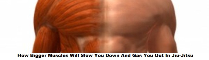 How Bigger Muscles Will Slow You Down And Gas You Out In Jiu-Jitsu