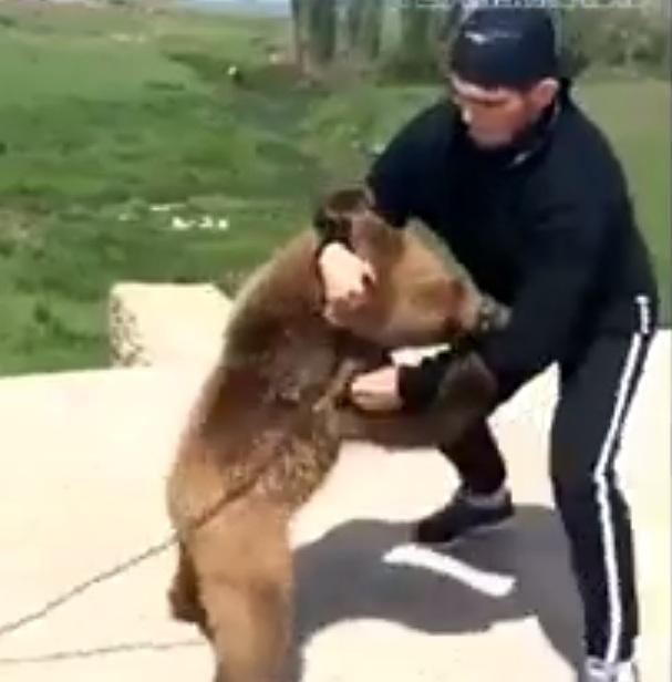 Khabib Nurmagomedov Vs Bear Part 2; This Time As An Adult