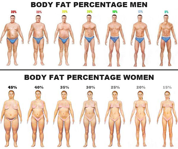 body-fat-percentage-men-women
