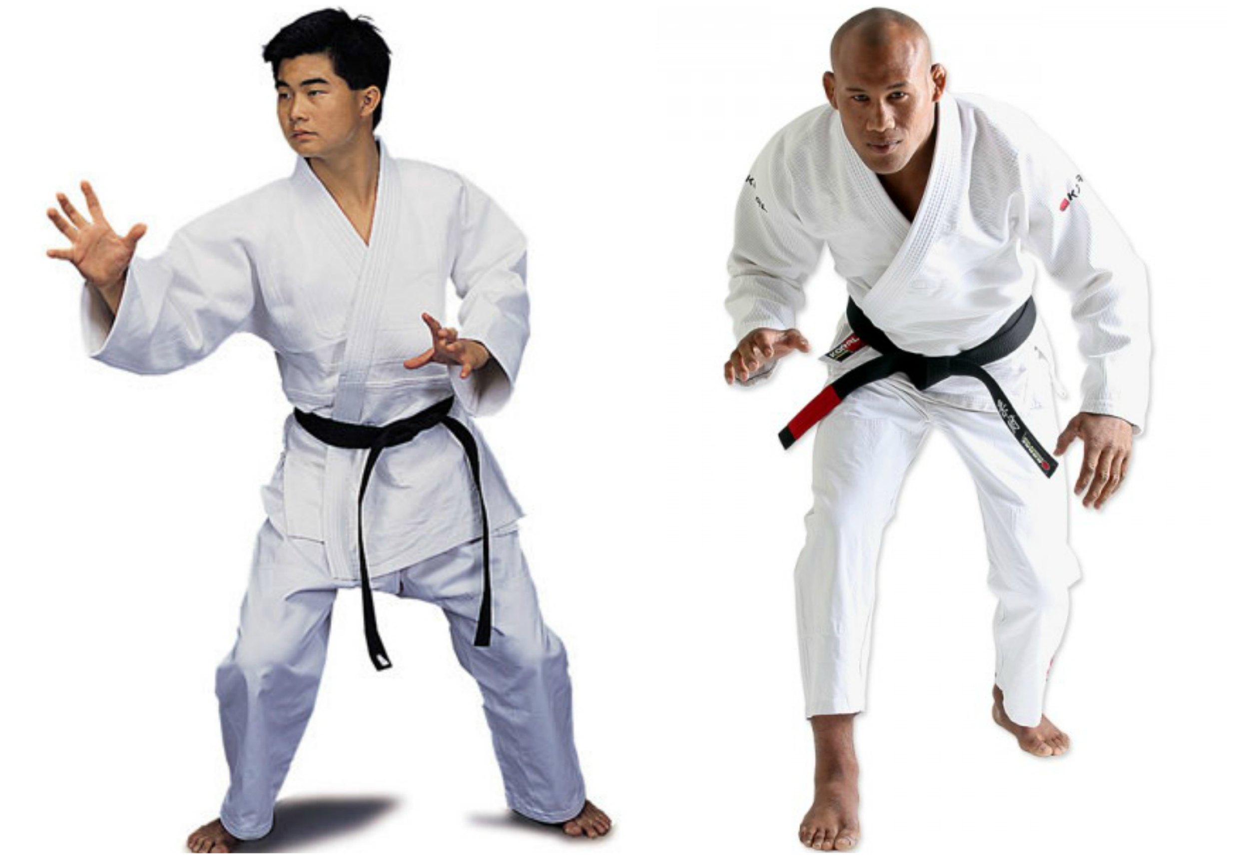comparing brazilian jujitsu and kickboxing essay