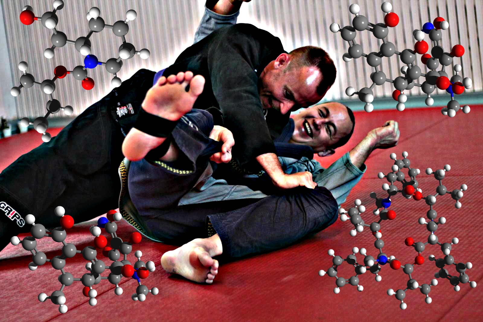 Understanding The Feel-Good Chemicals Released When You Do Jiu-Jitsu