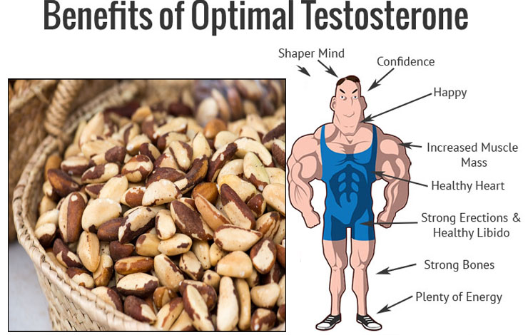 Natural Way To Boost Your Testosterone Levels