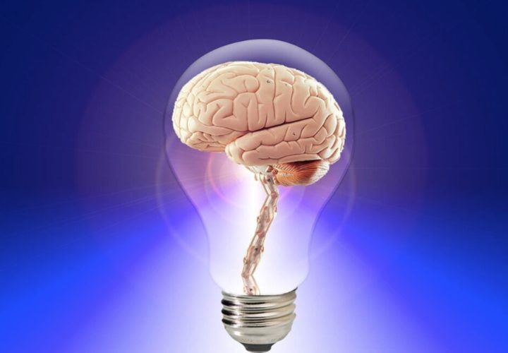 Brain Supplements – Do They Really Work?