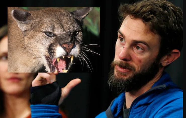 The Man Who Suffocated A Mountain Lion Speaks Up
