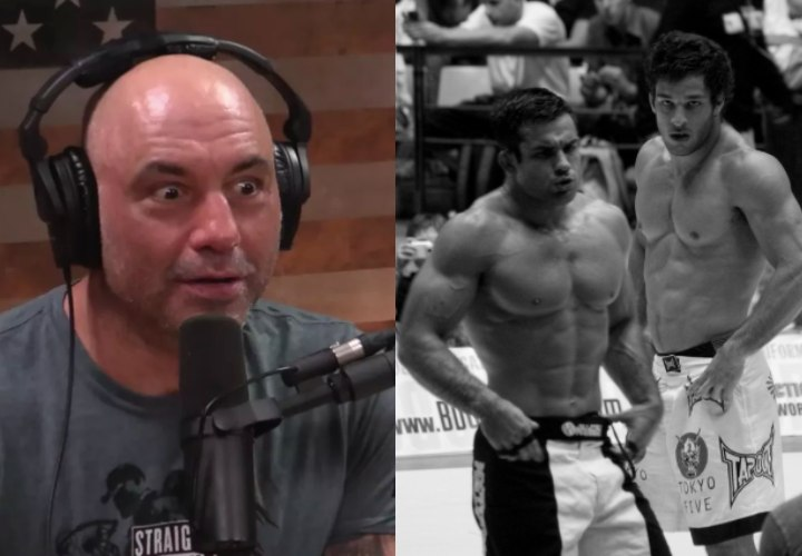 "Rogan: ""Everybody is Juiced Up in The Submission Grappling World"""