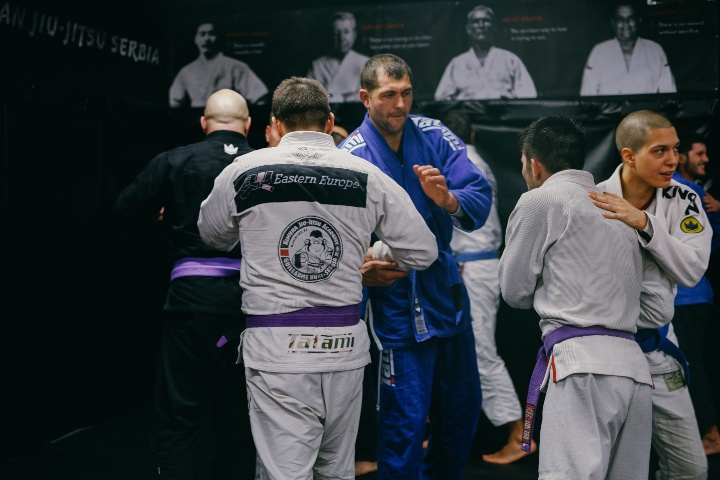 What's The Difference Between Blue And Purple Belt In BJJ?