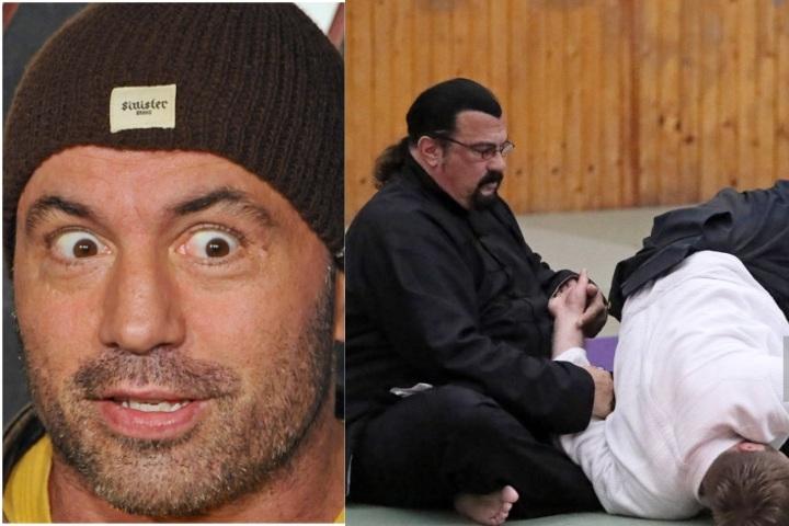Joe Rogan On If Steven Seagal is a Legit Martial Artist