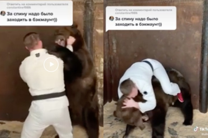 Meanwhile In Russia, BJJ Black Belt Rolls with a Bear