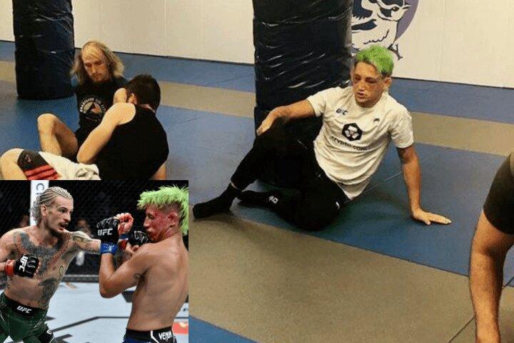 Inspiring: Kris Moutinho Wins $75k UFC Bonus & Coaches BJJ Class Next Morning